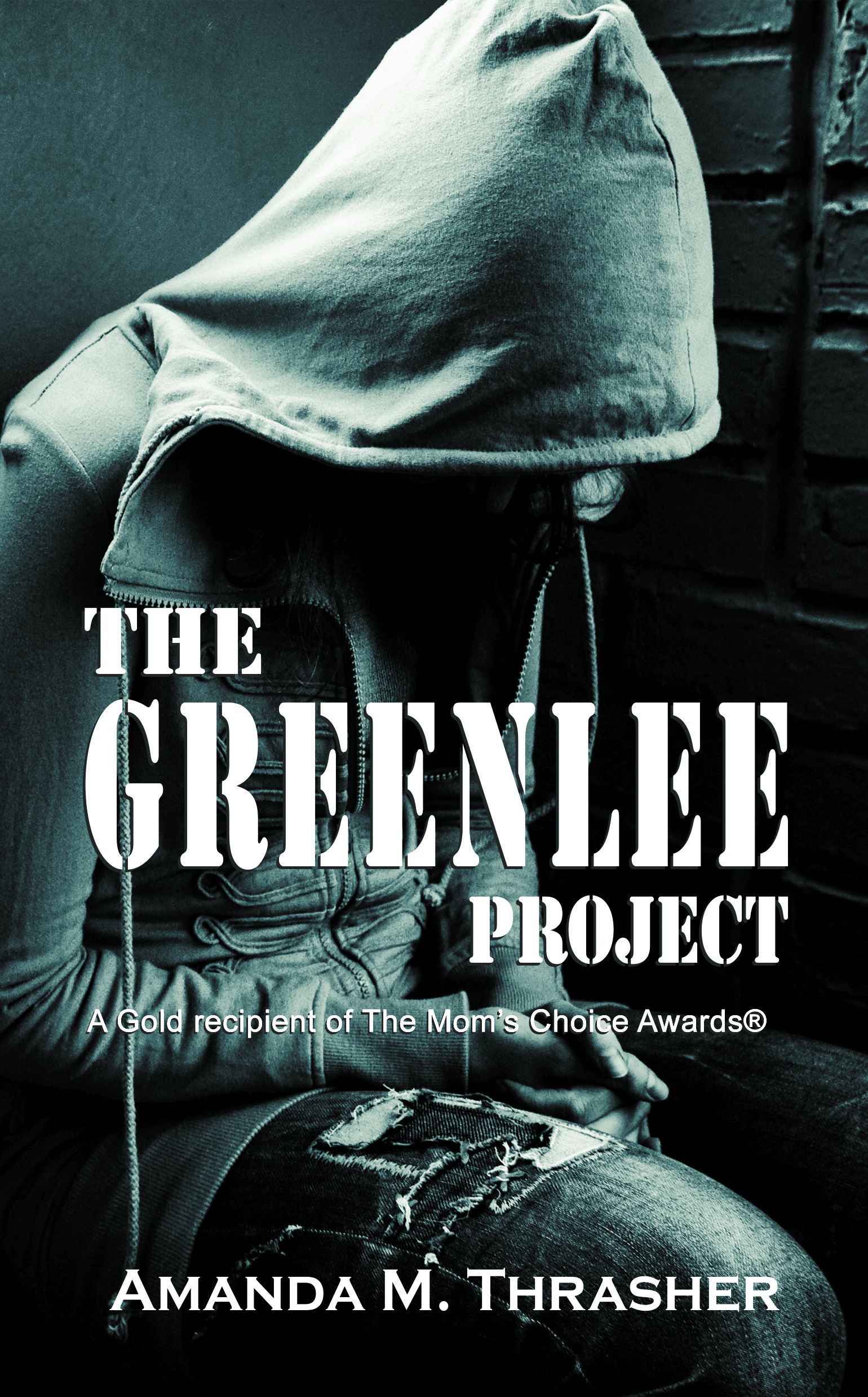 Greenlee Project Discussion